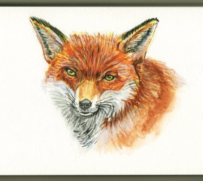 Red Fox by Charlie O'Shields