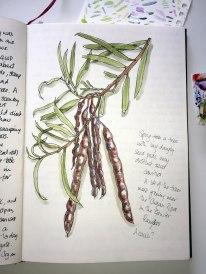 Doodlewash by Anna Warren