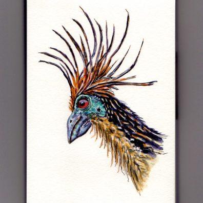 The Stinkbird Doodlewash