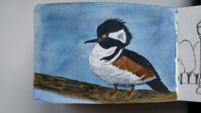 Doodlewash by Rob Nopola bird in watercolor sketchbook
