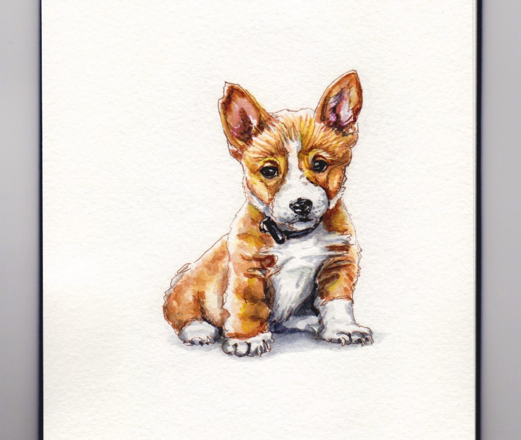 National Lost Dog Awareness Day - Doodlewash and watercolor painting of orphan corgi puppy