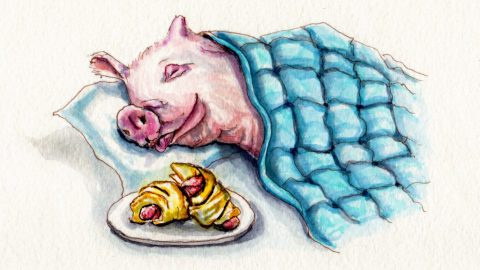 National Pigs In A Blanket Day Doodlewash and watercolor of a pigs in a blanket and a pink pig sleeping under a blanket