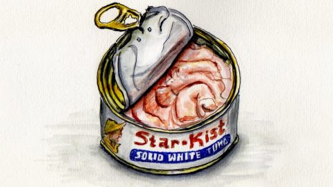 National Sorry Charlie Day - Doodlewash and watercolor sketch of open Starkist tuna can from the 70's