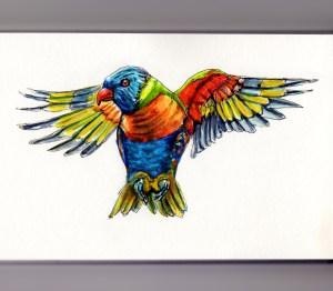 Doodlewash of a Rainbow Lorikeet - watercolor sketch of bird in flight