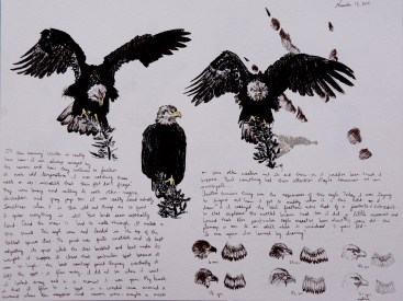 Doodlewash of Eagles in various poses by Jessica Hay