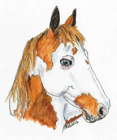 Horse doodlewash and watercolor sketch by KD Huff