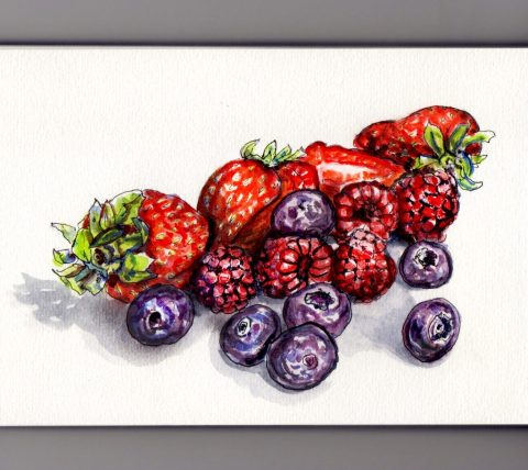 Doodlewash of Berries on the Brain strawberries blueberries and raspberries loose