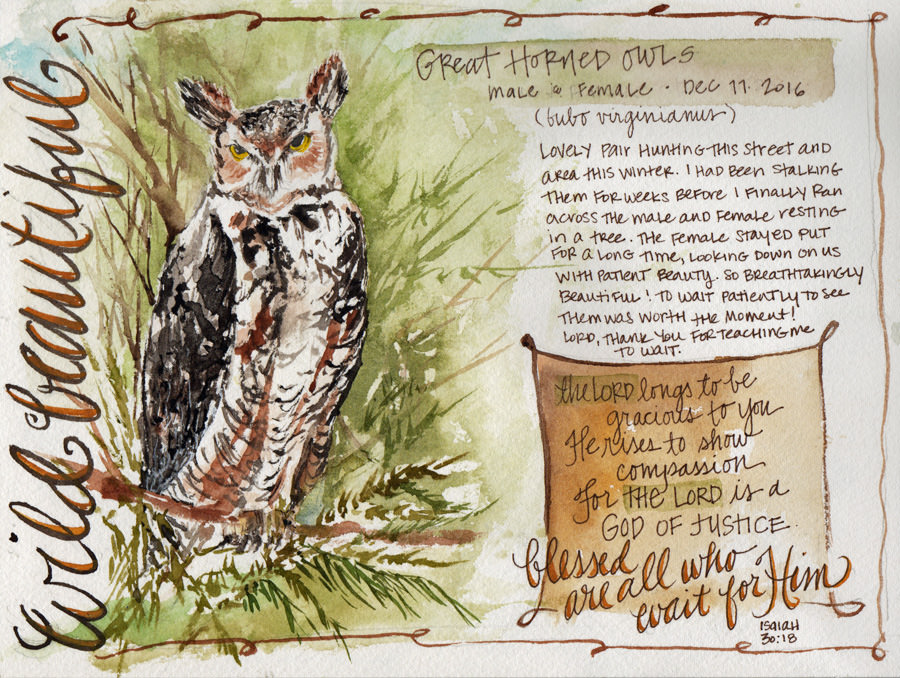 Doodlewash and watercolor sketch by Tonya at Scratchmade Journal of great horned owl