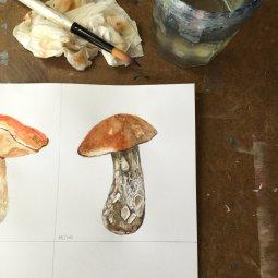 Mushroom watercolor painting - Doodlewash by Jen Fabish