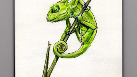 Doodlewash and watercolor sketch of tiny baby chameleon green