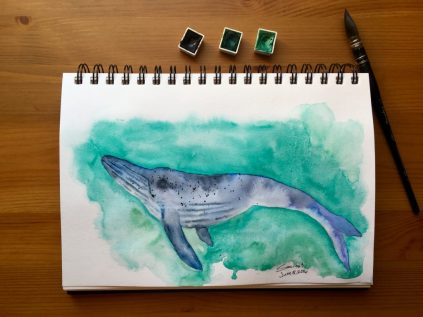 Stillman & Birn Beta Series watercolor journal with whale watercolor painting