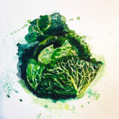 Doodlewash and watercolor sketch by Alice Cleary of lettuce