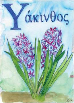 Doodlewash and watercolor sketch by M. L. Kappa of Yakinthos flower bloom in Athens Greece