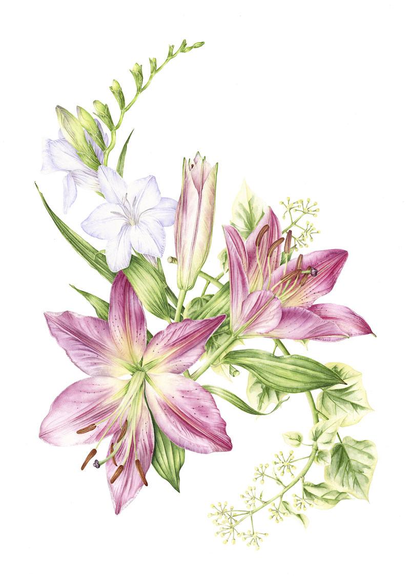 Doodlewash - Watercolor botanical illustration by Jarnie Godwin of hogarth flower arrangement