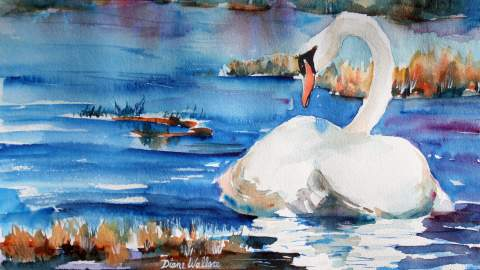 Doodlewash - Watercolor painting by Diane Wallace of swan