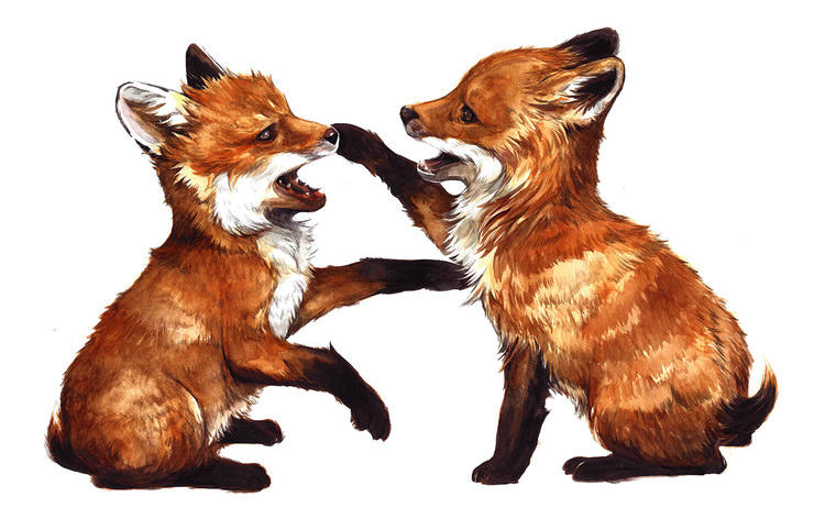 "Doodlewash - watercolor painting ""True Foxes"" by Yao Khaun"
