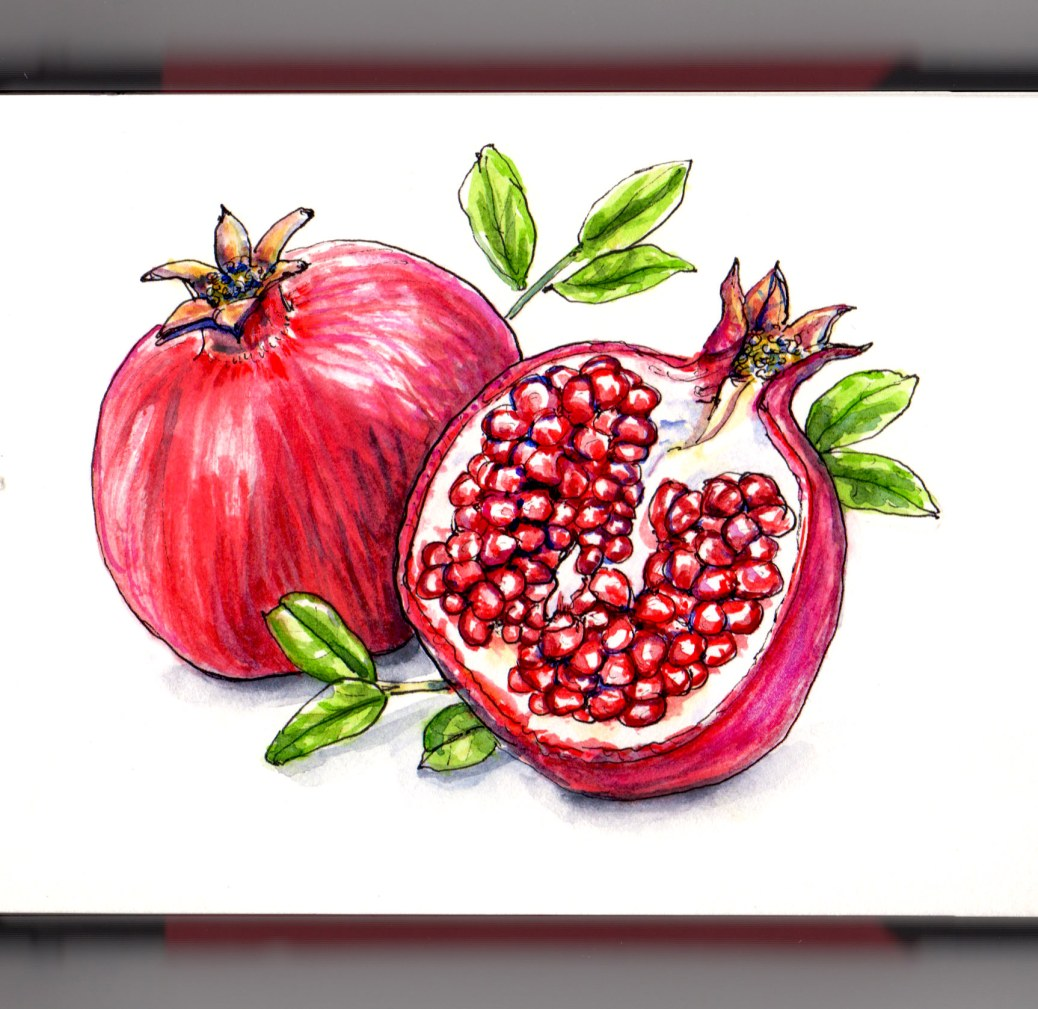 Day 30 - #WorldWatercolorGroup National Pomegranate Month Fruit watercolor painting white background #doodlewash