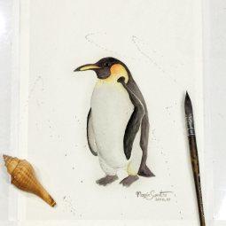 #WorldWatercolorGroup - Watercolor by Maggie Sumitro - Mr. Penguin - #doodlewash