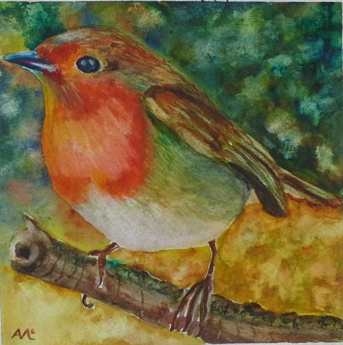 #WorldWatercolorGroup - watercolor of robin by Agnès McLaughlin - #doodlewash