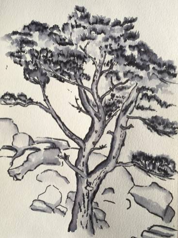#WorldWatercolorGroup - Watercolor Sketch by Dana Richards - #doodlewash