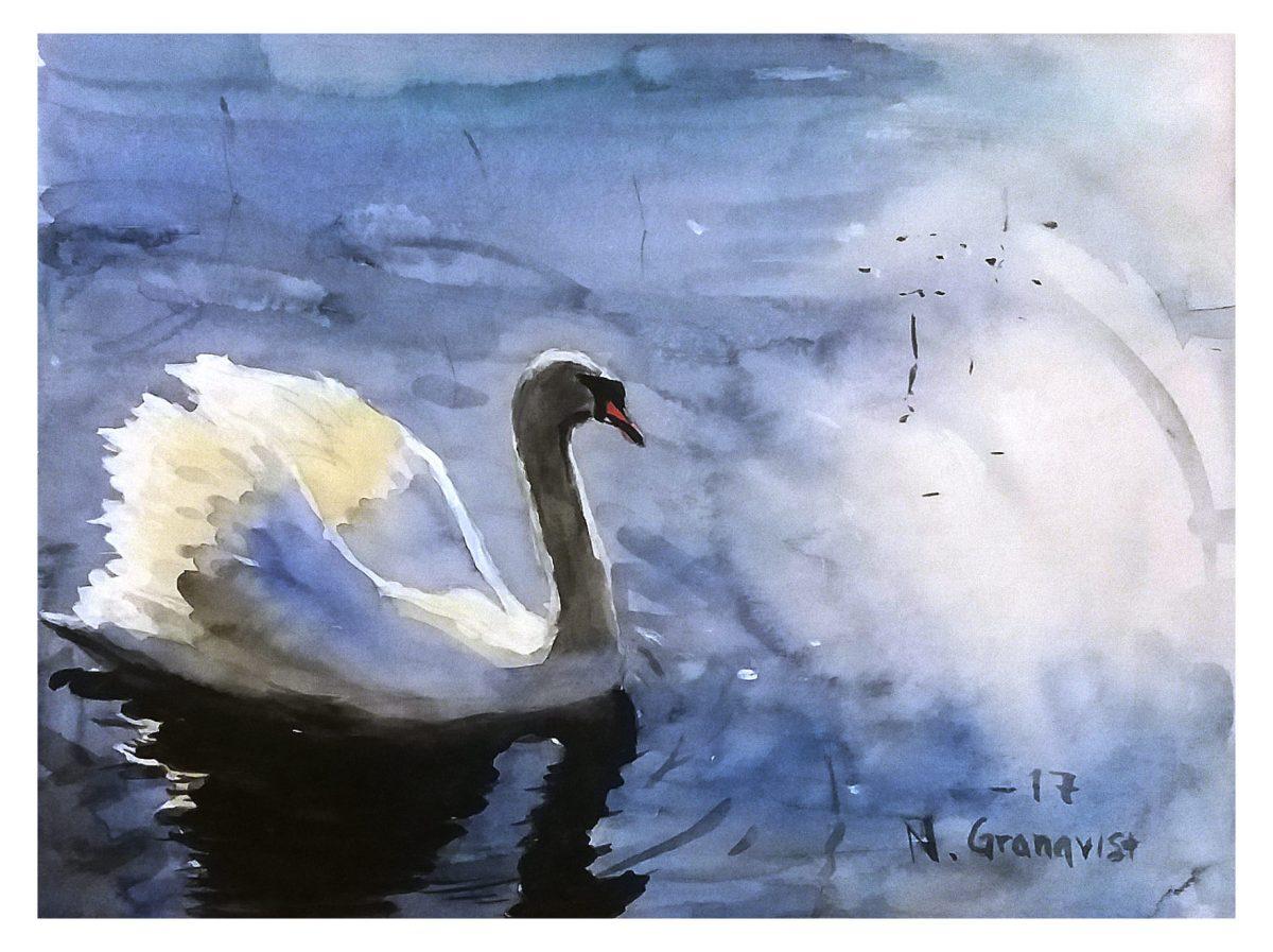 #WorldWatercolorGroup - Watercolor Painting of swan by Niklas Granqvist - #doodlewash