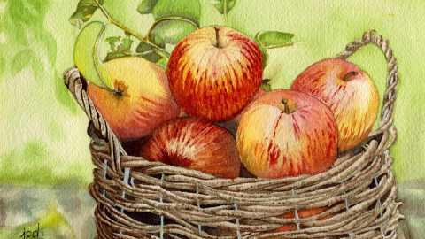 #WorldWatercolorGroup - Watercolor painting by Jodi Sones of basket of apples - #doodlewash