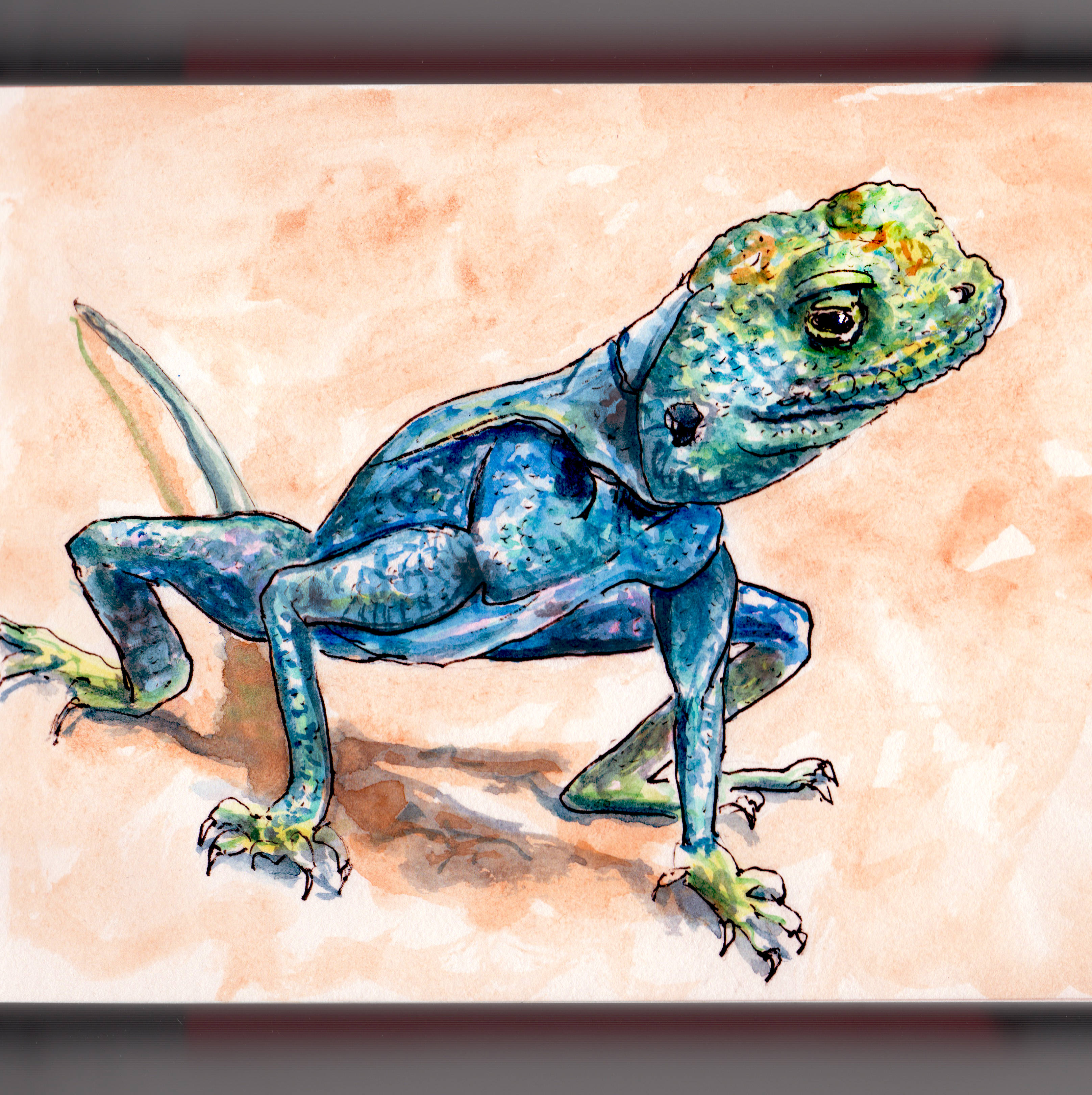 Day 24 - Leaping Lizards Watercolor of blue lizard - #doodlewash