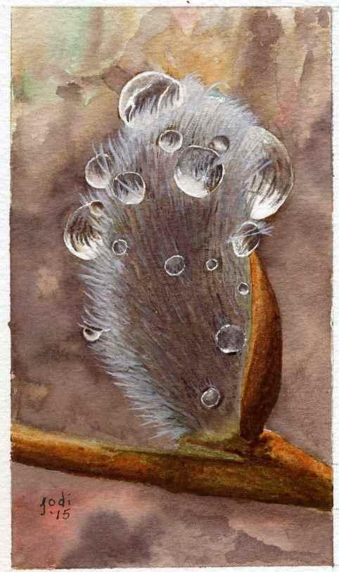 #WorldWatercolorGroup - Watercolor painting by Jodi Sones of dew drops - #doodlewash