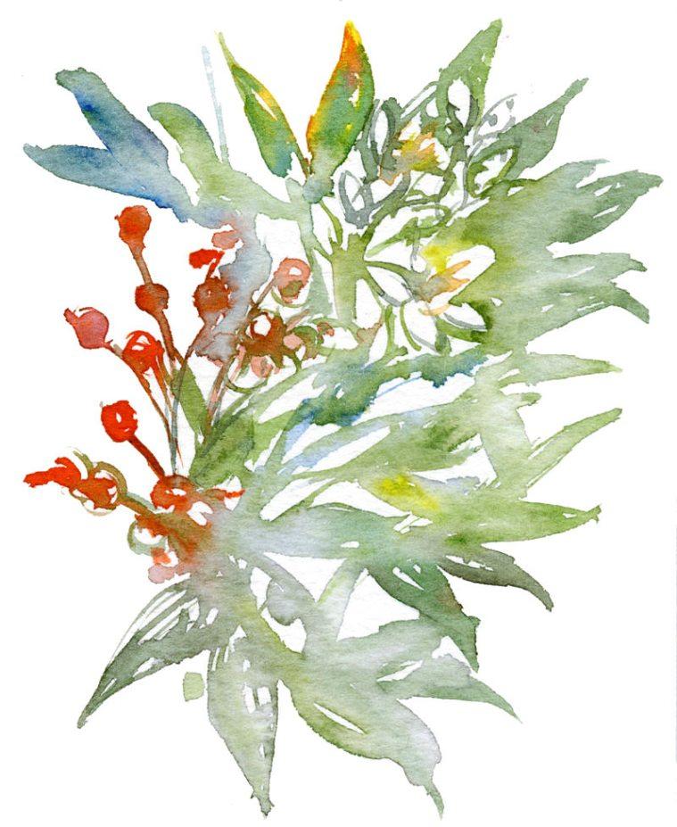 #WorldWatercolorGroup - Watercolor by Shiho Nakaza of Nandia Carson botanical - #doodlewash
