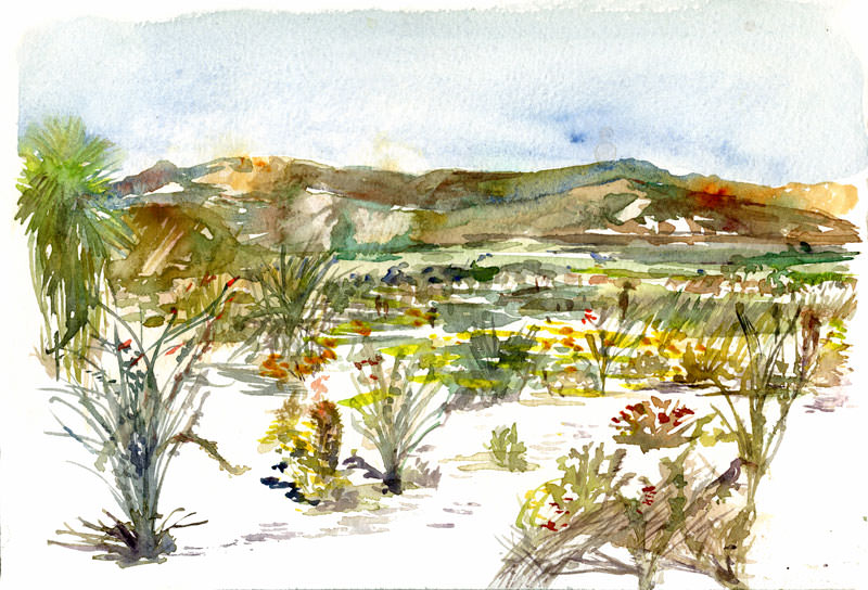 #WorldWatercolorGroup - Watercolor by Shiho Nakaza of Anza Borrego Desert Park Borrego Springs - #doodlewash
