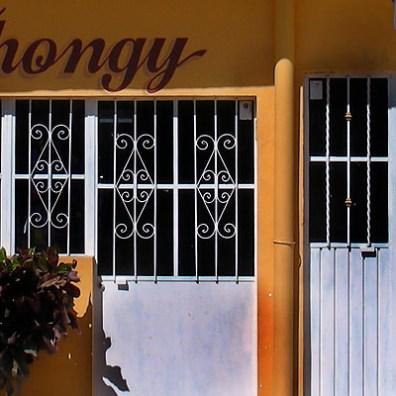 Thongy