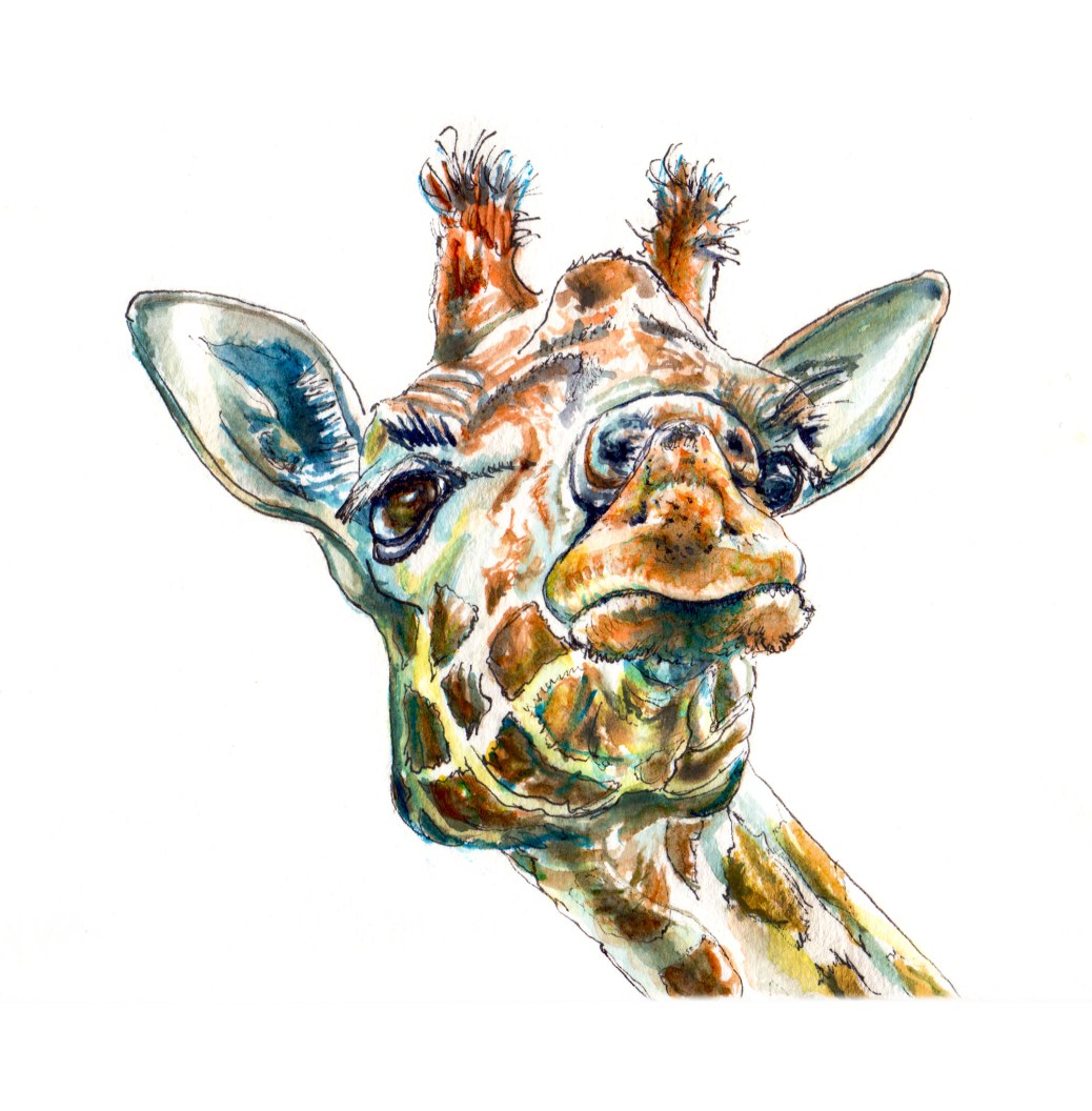 Day 16 - #WorldWatercolorGroup Funny Giraffe Face Watercolor - #doodlewash
