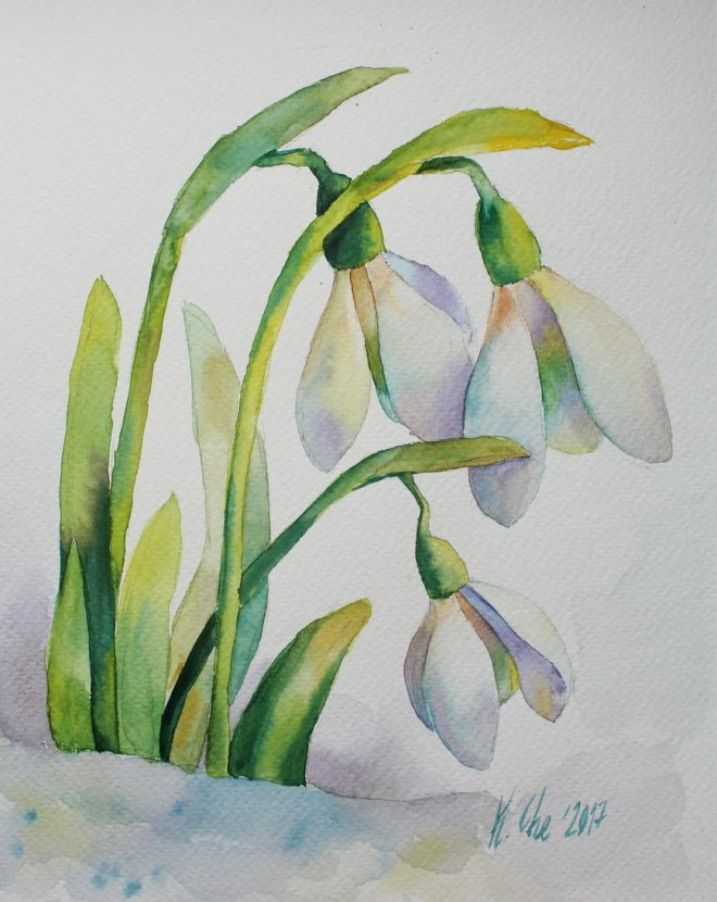 #WorldWatercolorGroup - Watercolor by Katiya Che of snowdrops - #doodlewash