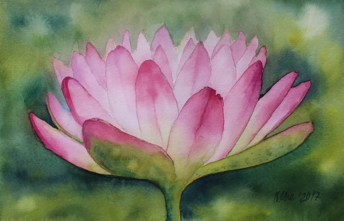 #WorldWatercolorGroup - Watercolor by Katiya Che of waterlily - #doodlewash