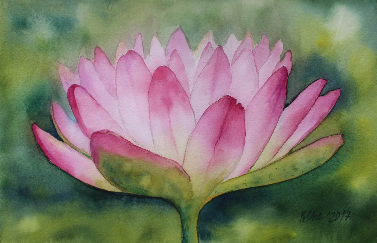 #WorldWatercolorGroup - Watercolor by Katiya Che of waterlily - #doodlewash
