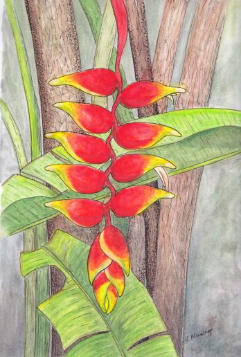 #WorldWatercolorGroup - Watercolor by Heather Musingo of plant - #doodlewash