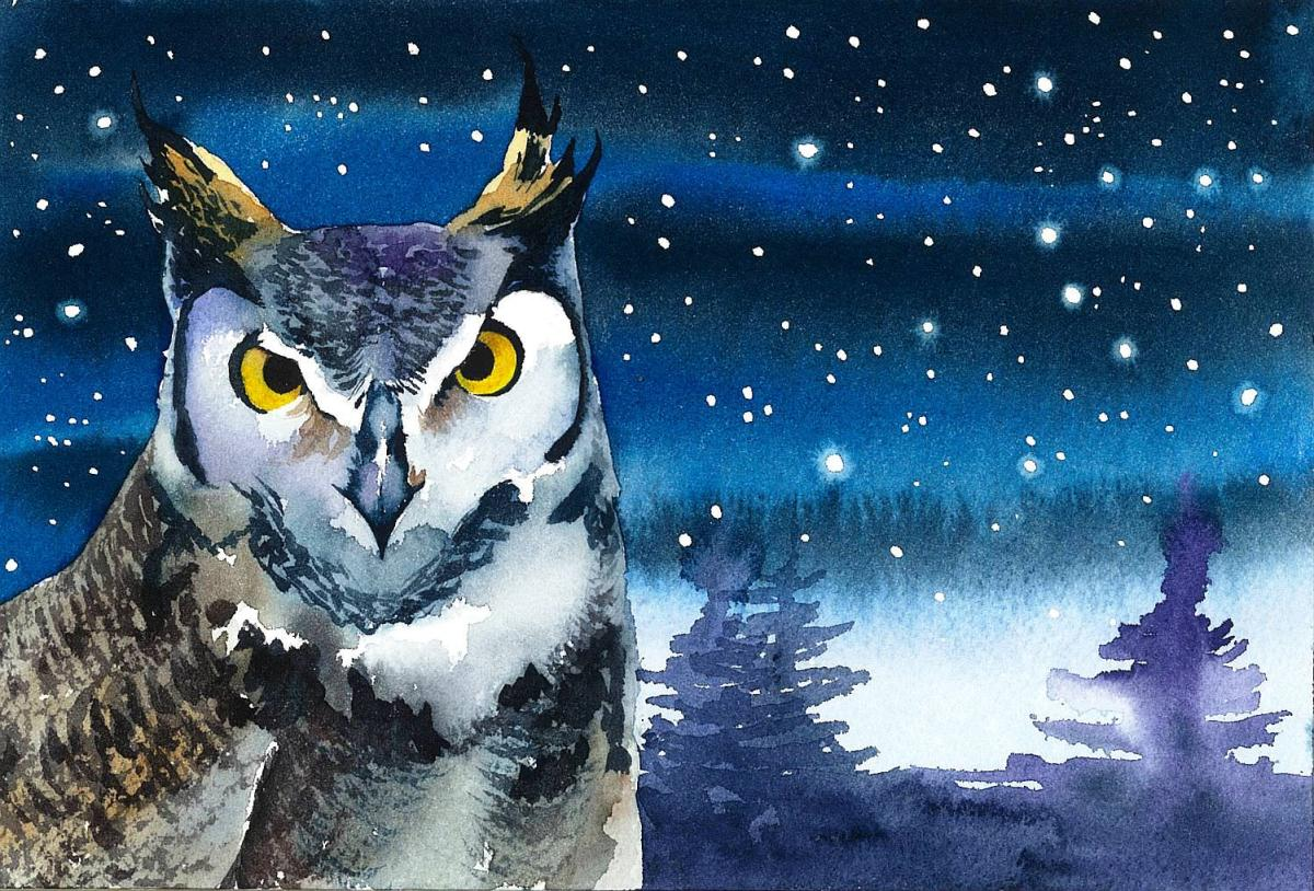 #WorldWatercolorGroup - Watercolor by Krzysztof Kowalski - Owl - #doodlewash