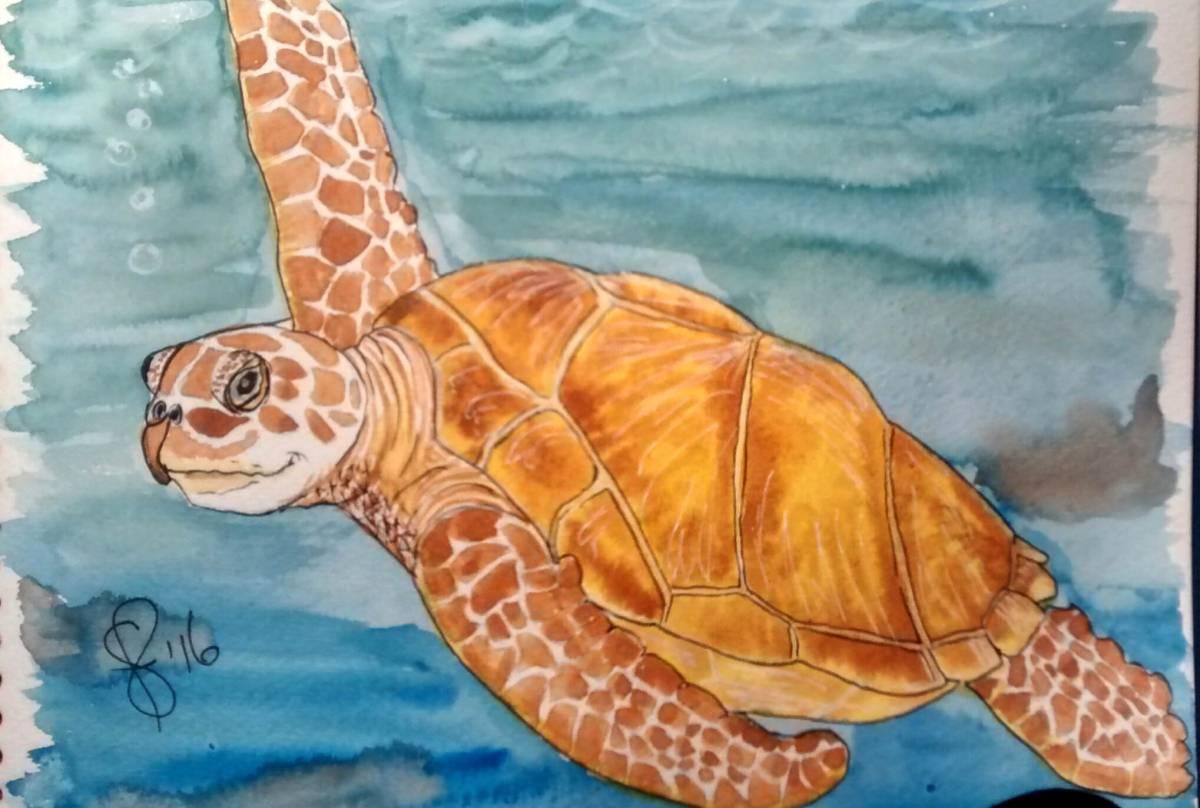 #WorldWatercolorGroup - Watercolor by Susan Feniak - sea turtle - #doodlewash