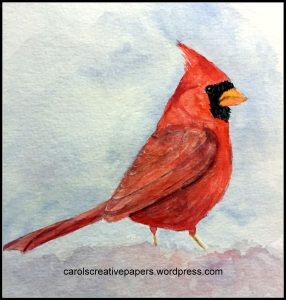 Male Cardinal – birds are one of my favorite subjects to watercolor. Cardinal