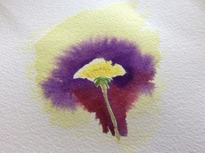A dandelion! Experimenting with colour. Not too happy but at the same time ces't la vie. It&#8