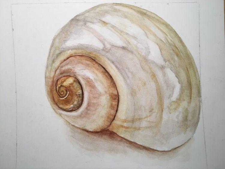 Shell from Anna Mason class IMG_2613