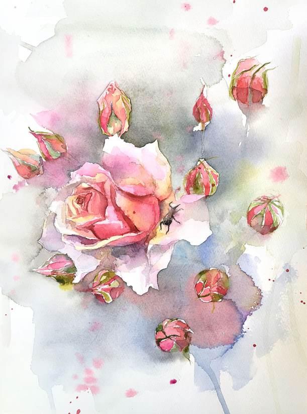 #WorldWatercolorGroup - Watercolor by Violeta Boyadzhieva - rose and buds - #doodlewash