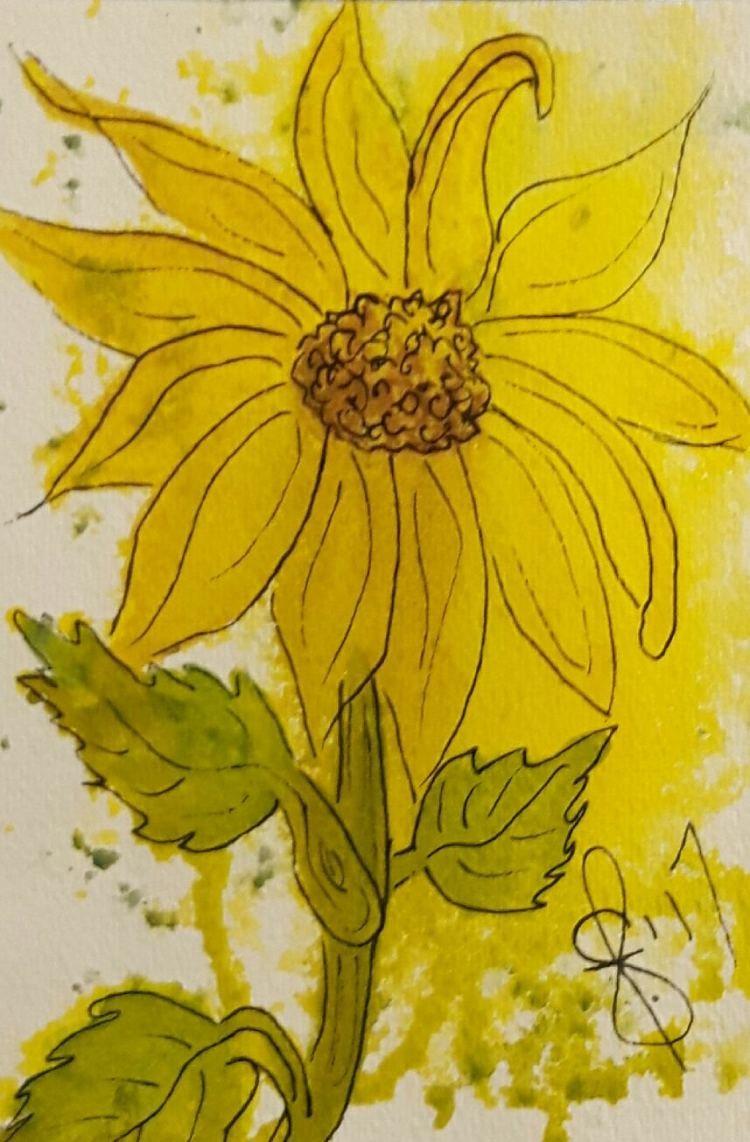 "#WorldWatercolorMonth July 27 ""Sunshine\"" To me sun flowers are a bit of sunshine. Orig"
