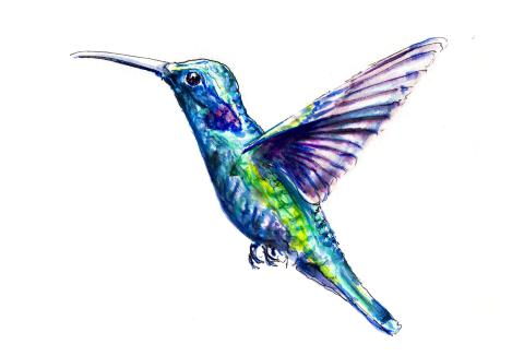 World Watercolor Month – Day 21 – A Hummingbird In The Wind