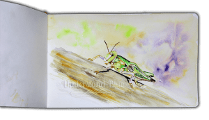WWM #18 – Running wild. You know, like grasshoppers. Which are made up of a billion pieces tha