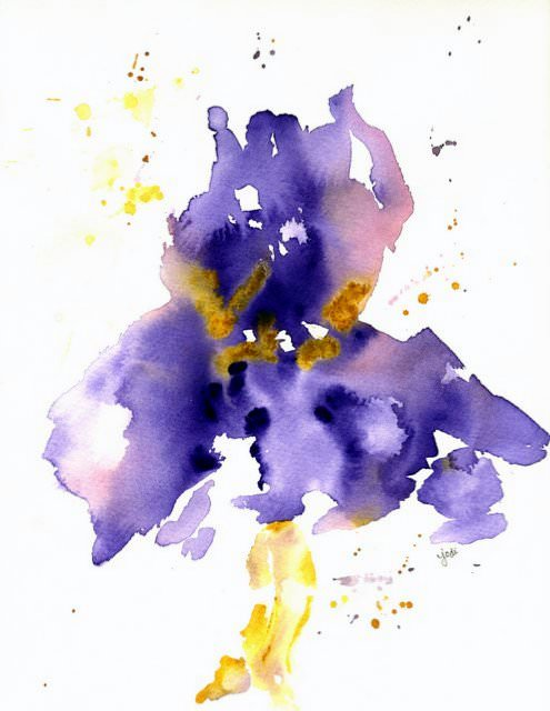 Purple Iris 2 purple iris 2 watercolor