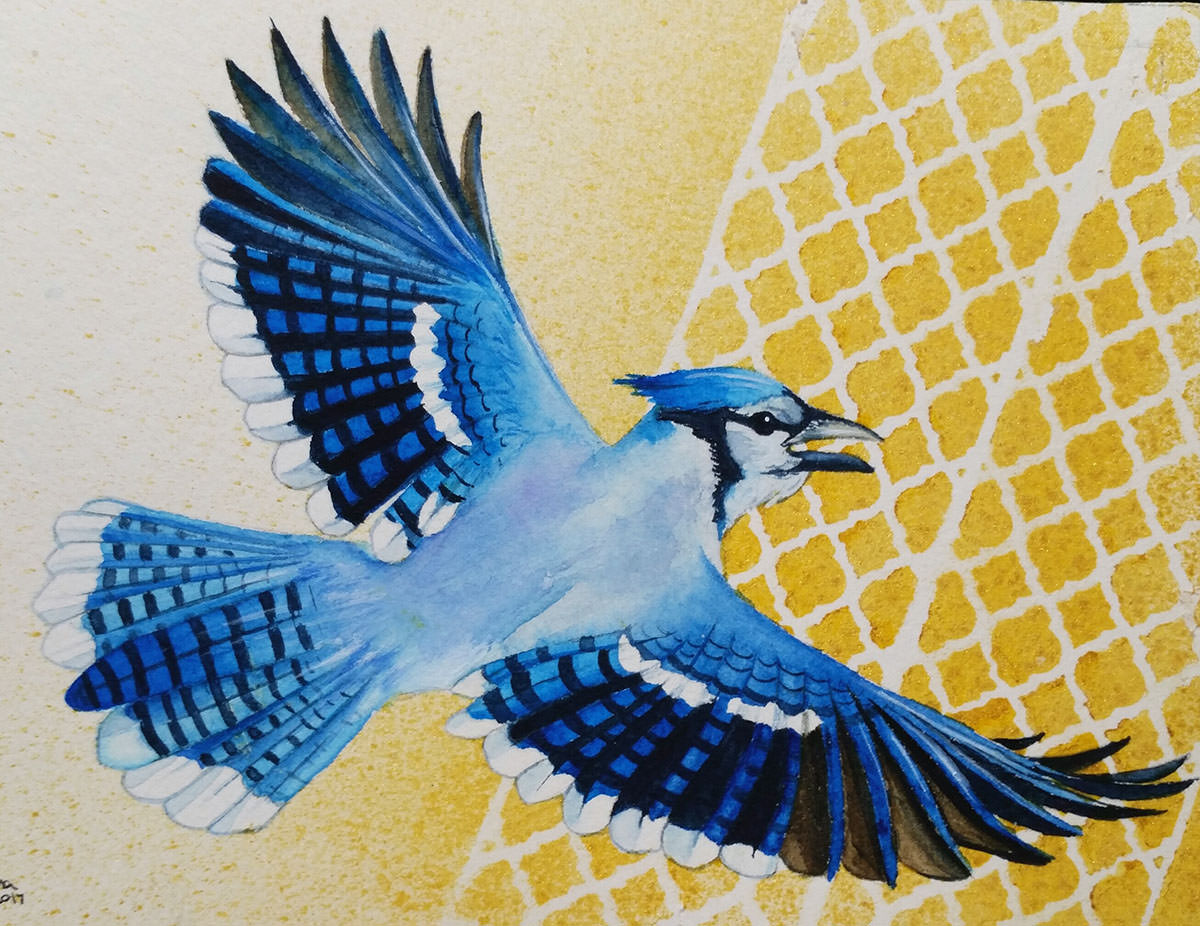 #WorldWatercolorGroup - Watercolor painting - blue jay bird flying - by Taylor Barton - Doodlewash