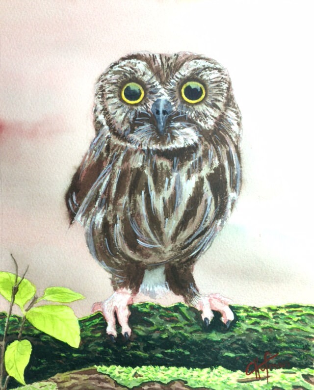 My niece wanted an owl drawn for her birthday so I attempted to paint one instead. Think I needed to