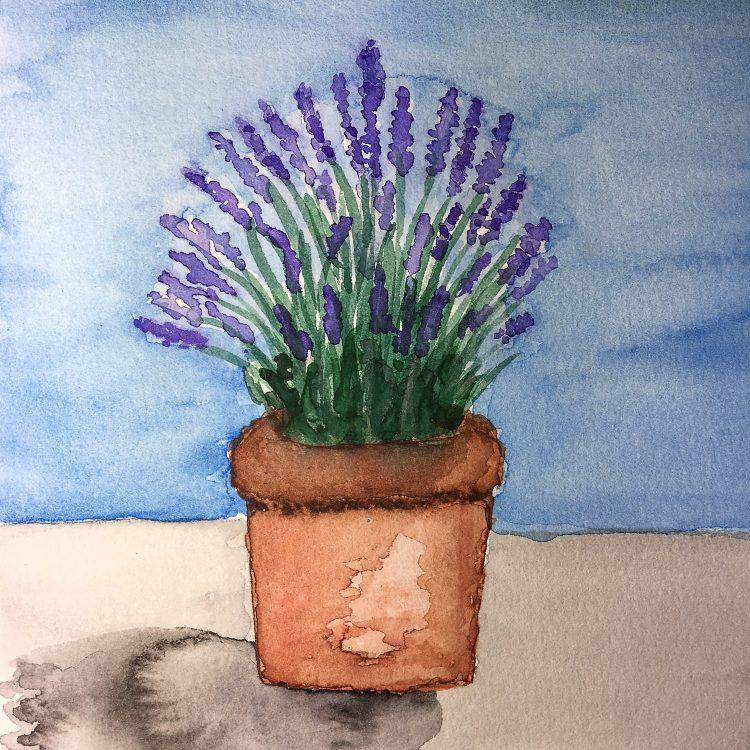 "Lavender Pot – 6"" x 6"" watercolor #worldwatercolorgroup #tdbdraw #lavender #watercolor IMG"