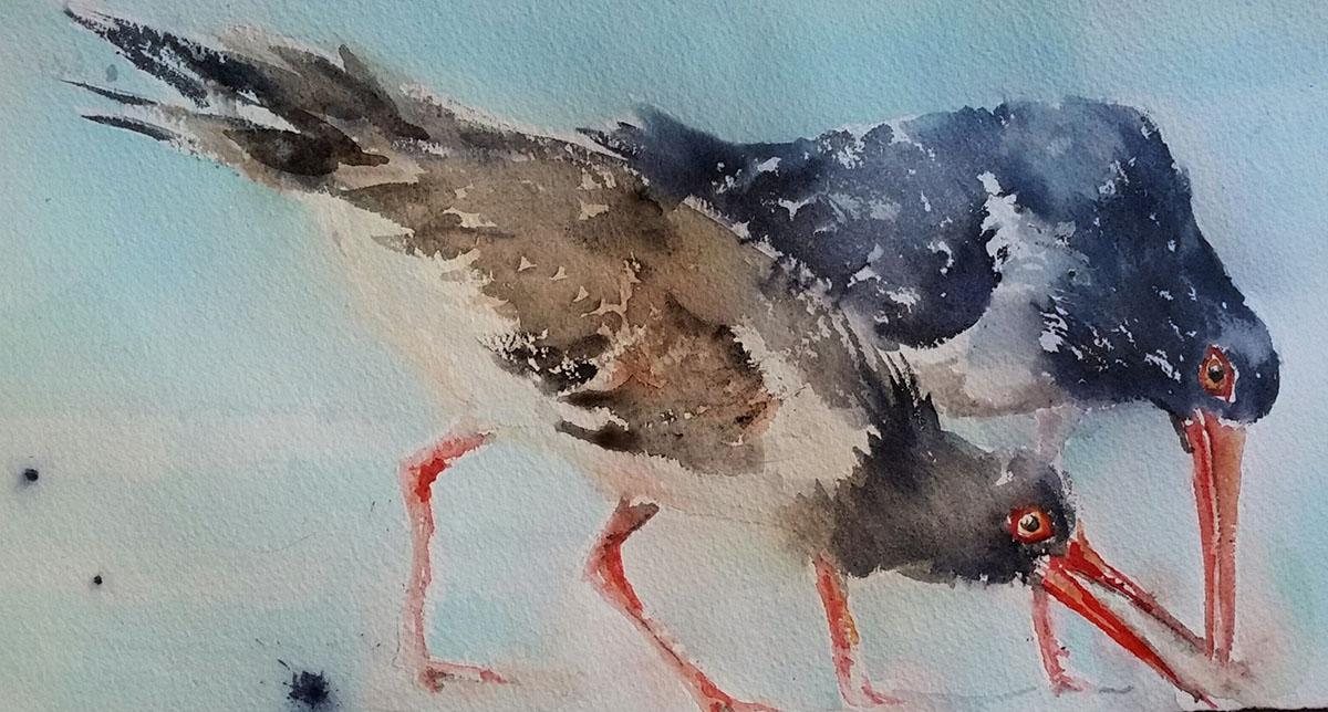 #WorldWatercolorGroup - Watercolor by Terhi Kalliola - Birds - Doodlewash